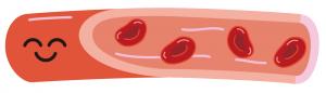 血液の改善