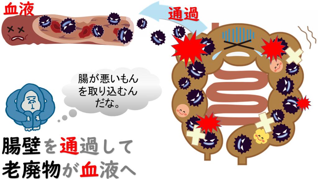 腸内環境の悪化