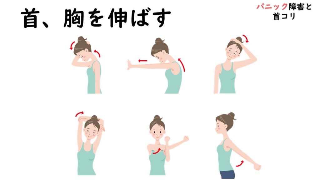 パニック障害と首コリのストレッチ